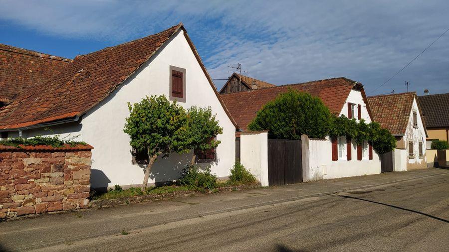 Estimation d'un projet de rénovation de la charpente et toiture d'une maison à Niedernai